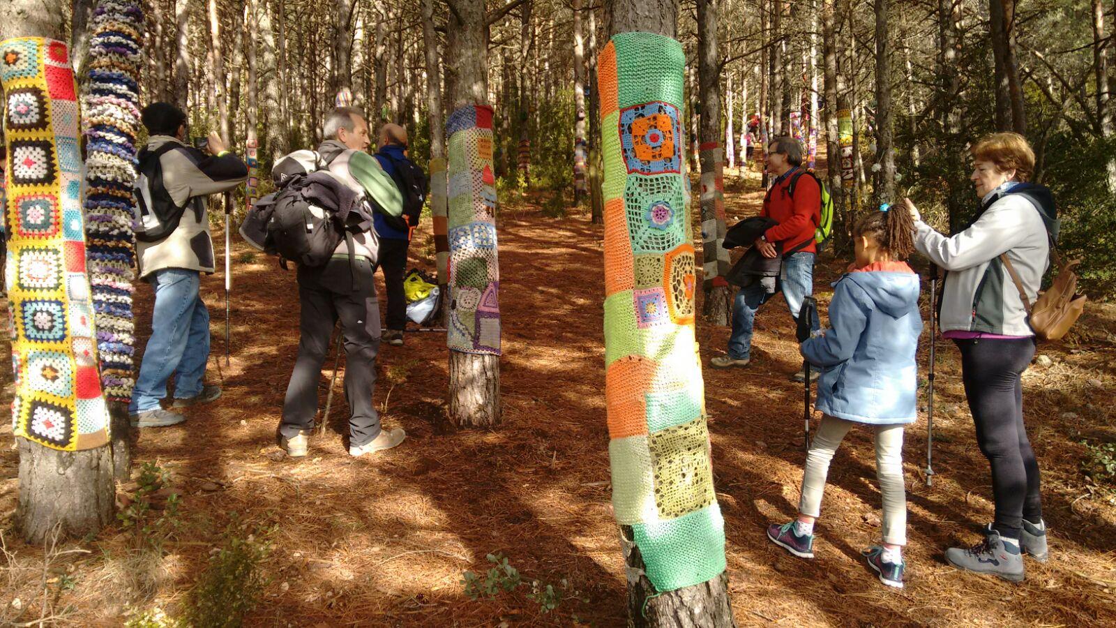 Bosque-Encantado-19.jpg