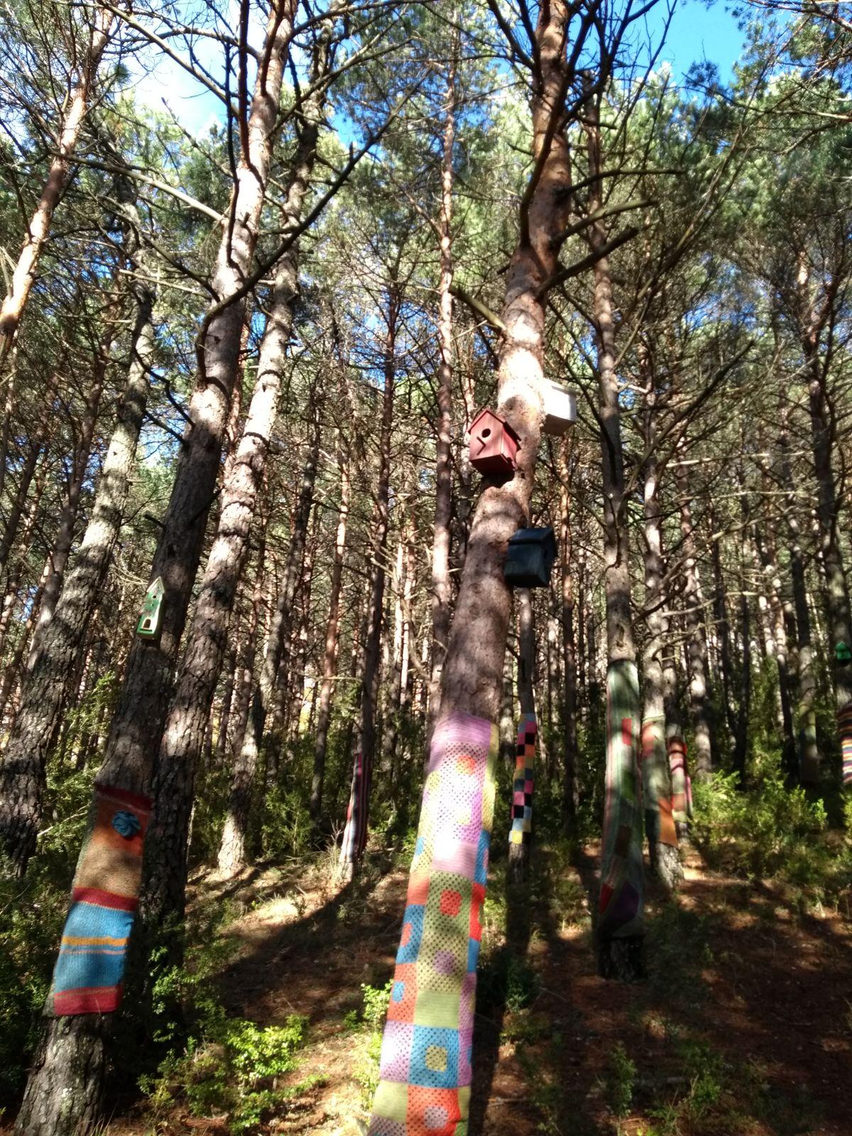 Bosque-Encantado-21.jpg