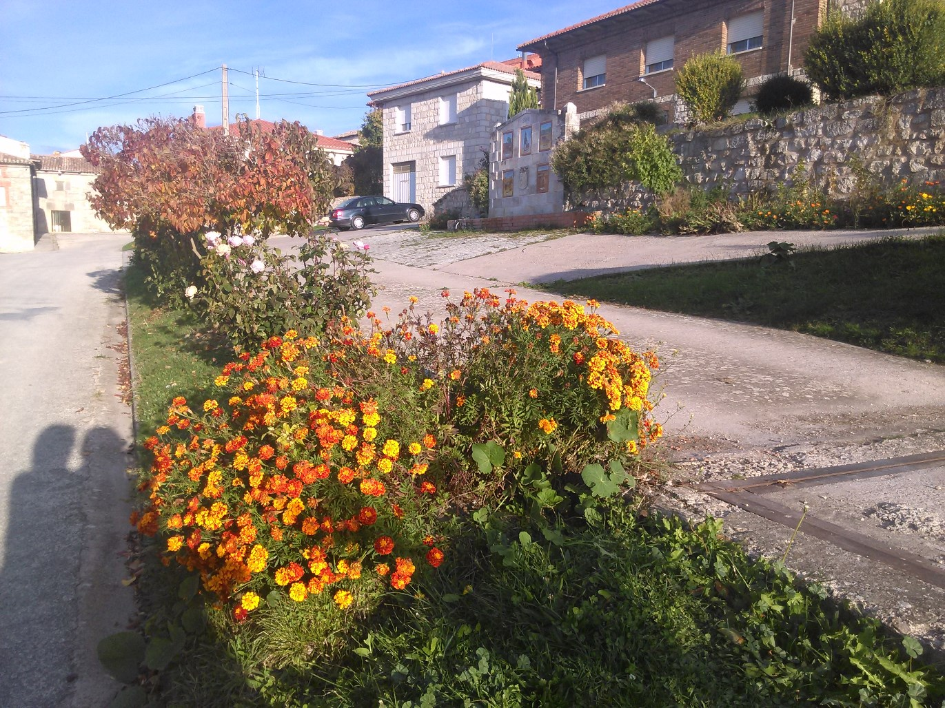 llego-el-otoño-2.jpg