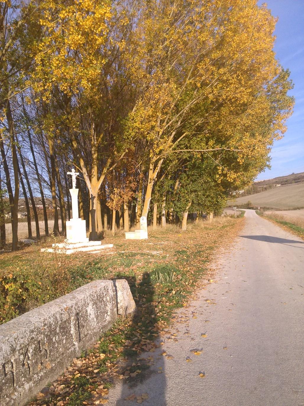llego-el-otoño-4.jpg